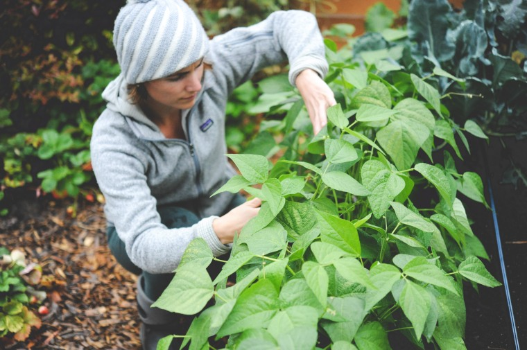 hilary-and-bush-beans