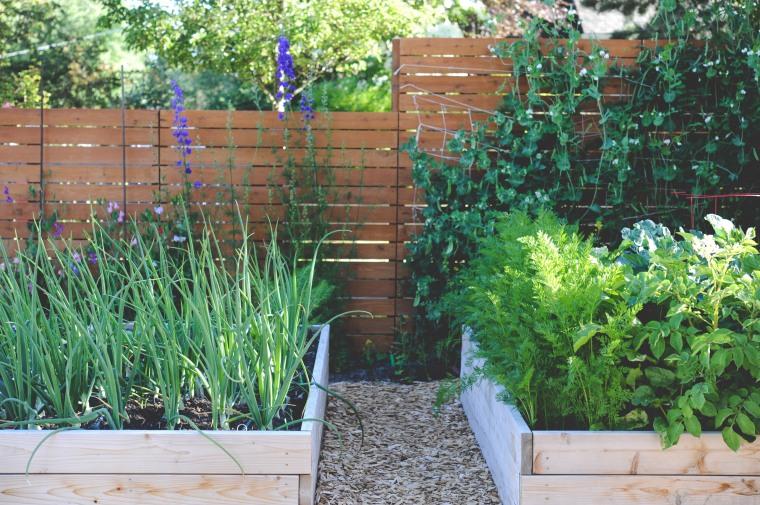 hilarys-garden